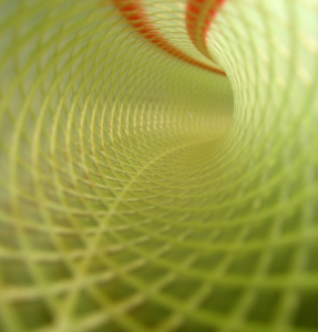 green-tunnel-hose